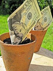 grow your investment portfolio